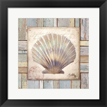 Framed Beach Shell I Print
