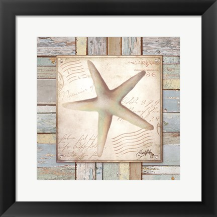Framed Beach Shell IV Print