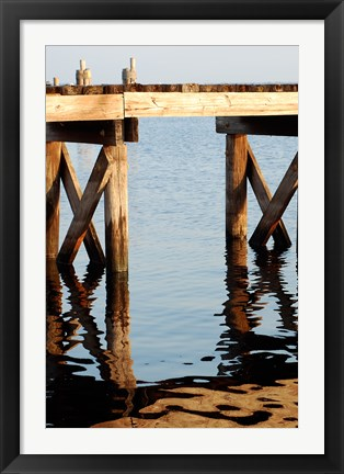 Framed Waterside Beauty I Print