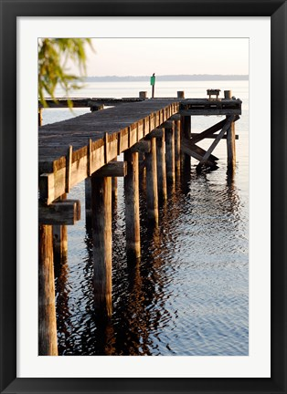 Framed Waterside Beauty II Print