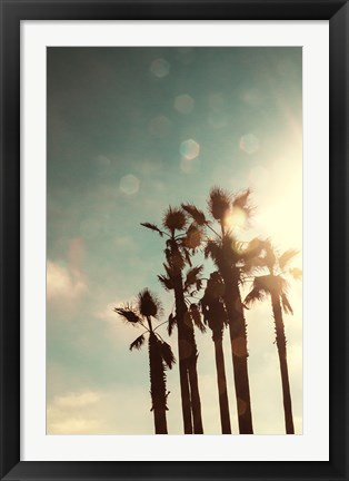 Framed Palms in the Sun Print