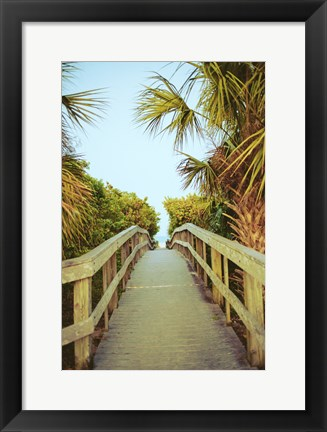Framed Palm Walkway I Print