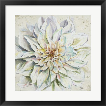 Framed White Dahlias II Print