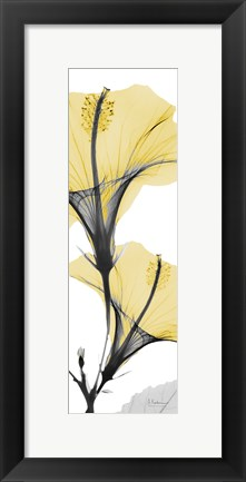 Framed Hibiscus Yellow Print