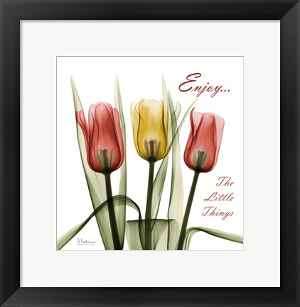 Framed Tulips Enjoy The Little Things Print