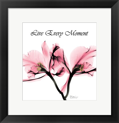 Framed Moment Orchid Print