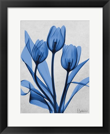 Framed Midnight Tulips 2 Print