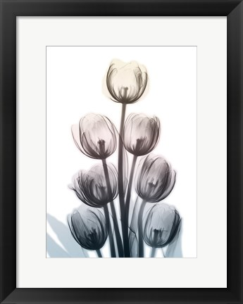 Framed Springing Tulips Print