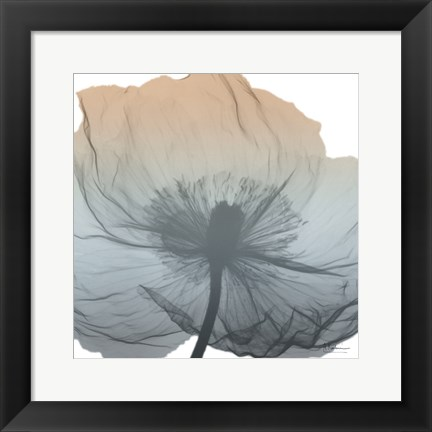 Framed Poppy Earthy Beauty Print