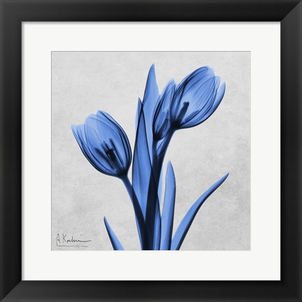 Framed Midnight Tulips Print