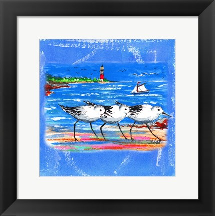 Framed Beach-Front-Shore Birds Print