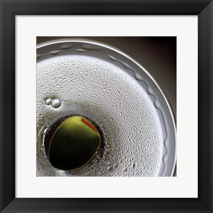 Framed Birds Eye Martini Print