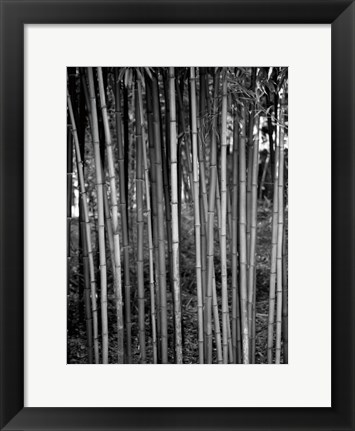 Framed Beach Foliage 2 Print