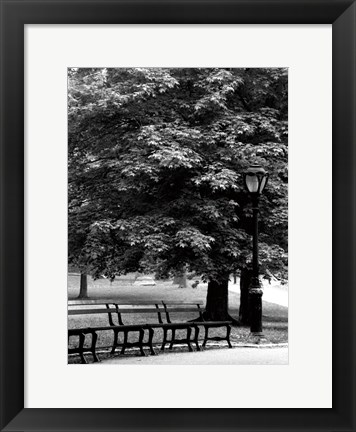 Framed Central Park Benches Print