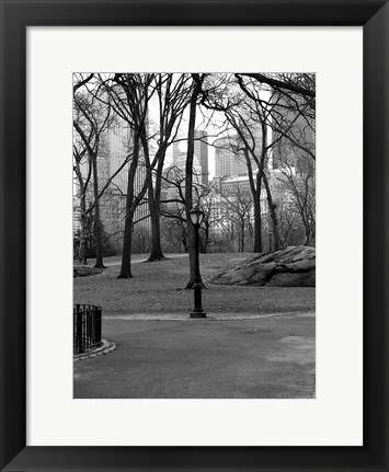 Framed Central Park Image 062 Print