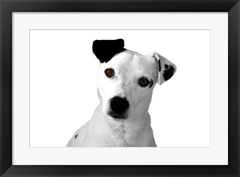 Framed Jack Russell Buddy 2 Print