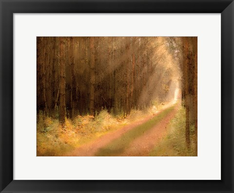 Framed Road To Enlightenment Print