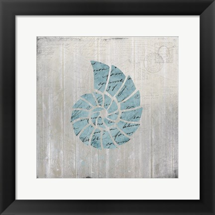 Framed Seashell 2 Print