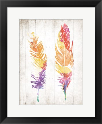 Framed Wooden Feathers Print