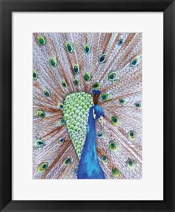 Framed Peacock King Print