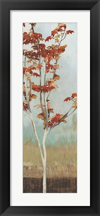 Framed Maple Tree II Print