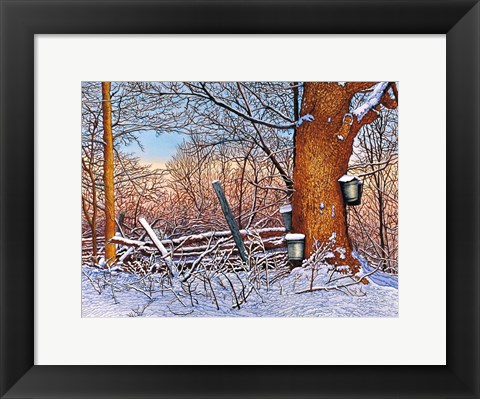 Framed Buckets And Branches Print