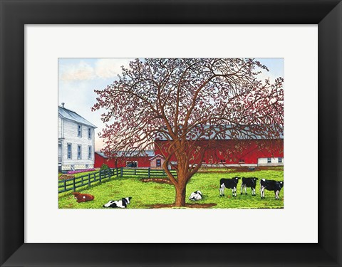 Framed Cow Pasture, Leon, Ny Print