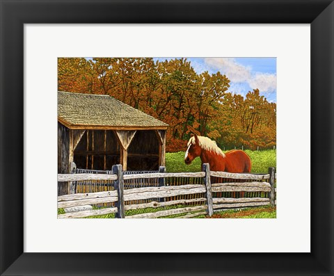 Framed Old Horse Shed, Mumford Ny Print