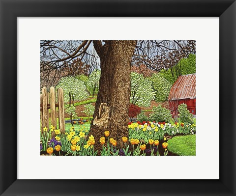 Framed Tulips And Daffodils, Boston Ny Print