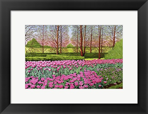 Framed Tulips At Longwood Gardens I, Kennett Square Pa Print