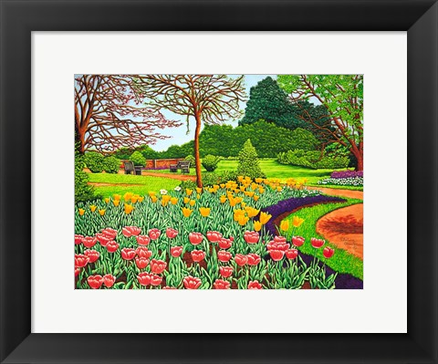 Framed Tulips At Longwood Gardens V, Kennett Square Pa Print