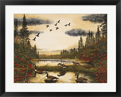 Framed Canada Geese Print