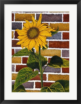 Framed One Sunflower Print