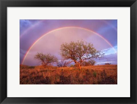 Framed Arizona Rainbow Print