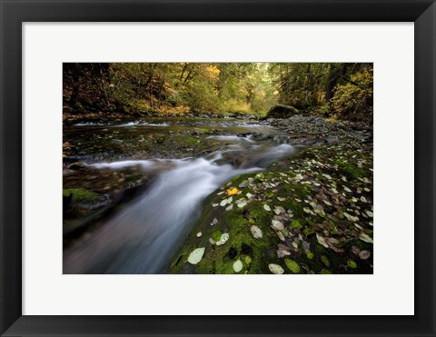 Framed Rushing Best Print
