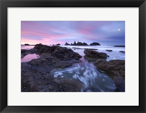 Framed Seal Rock Colors Print