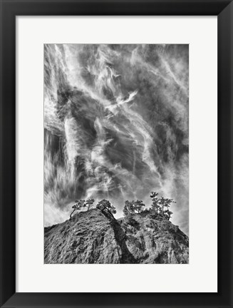 Framed Tree Island Clouds Pushed Print