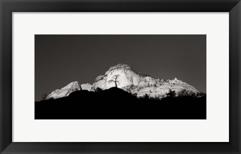 Framed Zion Tree Silhouette Print