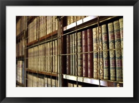 Framed Library Bookcases Print
