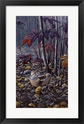Framed Autumn Colors- Woodcock Print