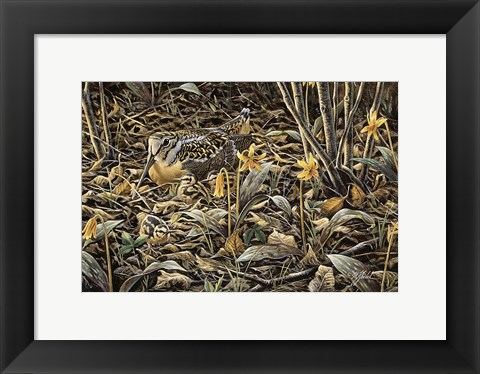 Framed Early Brood - Woodcock Young Print