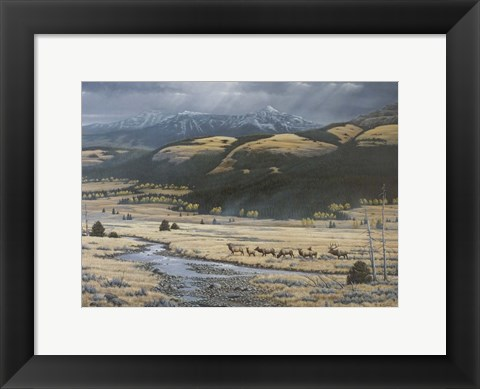 Framed Big Valley Elk Print