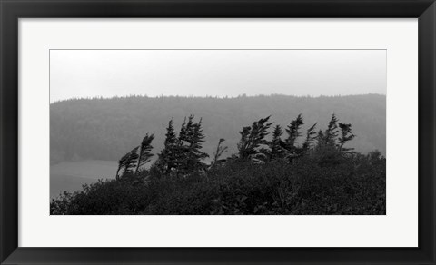 Framed View from the Cape II Print