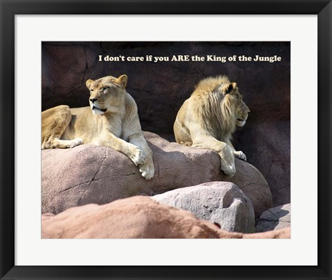 Framed King of the Jungle Lion Print