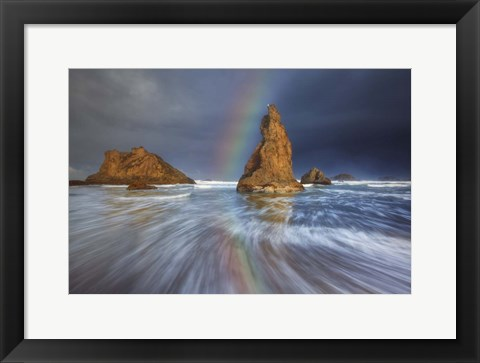 Framed Seagull Storm Watch Print