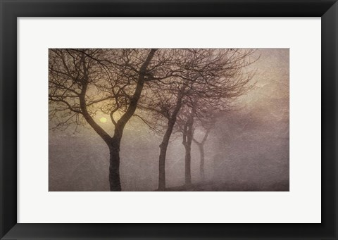 Framed Early Morning Print