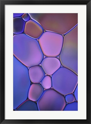 Framed Purple Stained Glass Print