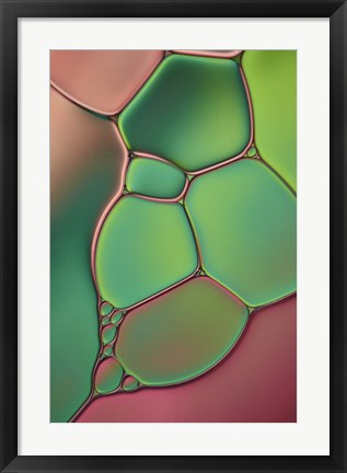 Framed Stained Glass V Print