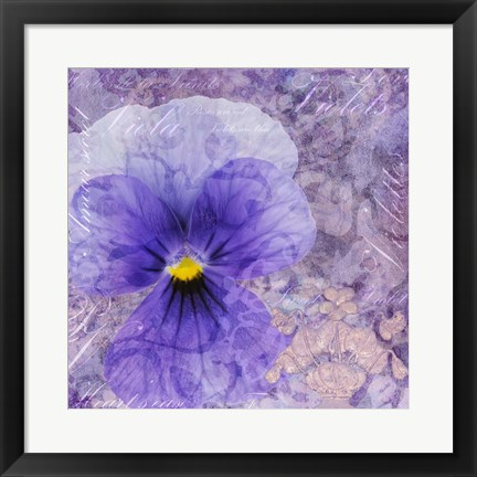 Framed Viola - Secret Love Print