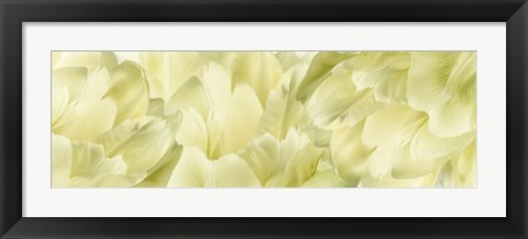 Framed Yellow Tulip Scape Print